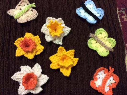daffodils for woollen woods