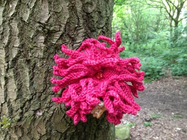Flower Woollen Woods 2016