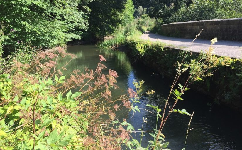 A Walk Along the Cromford Canal
